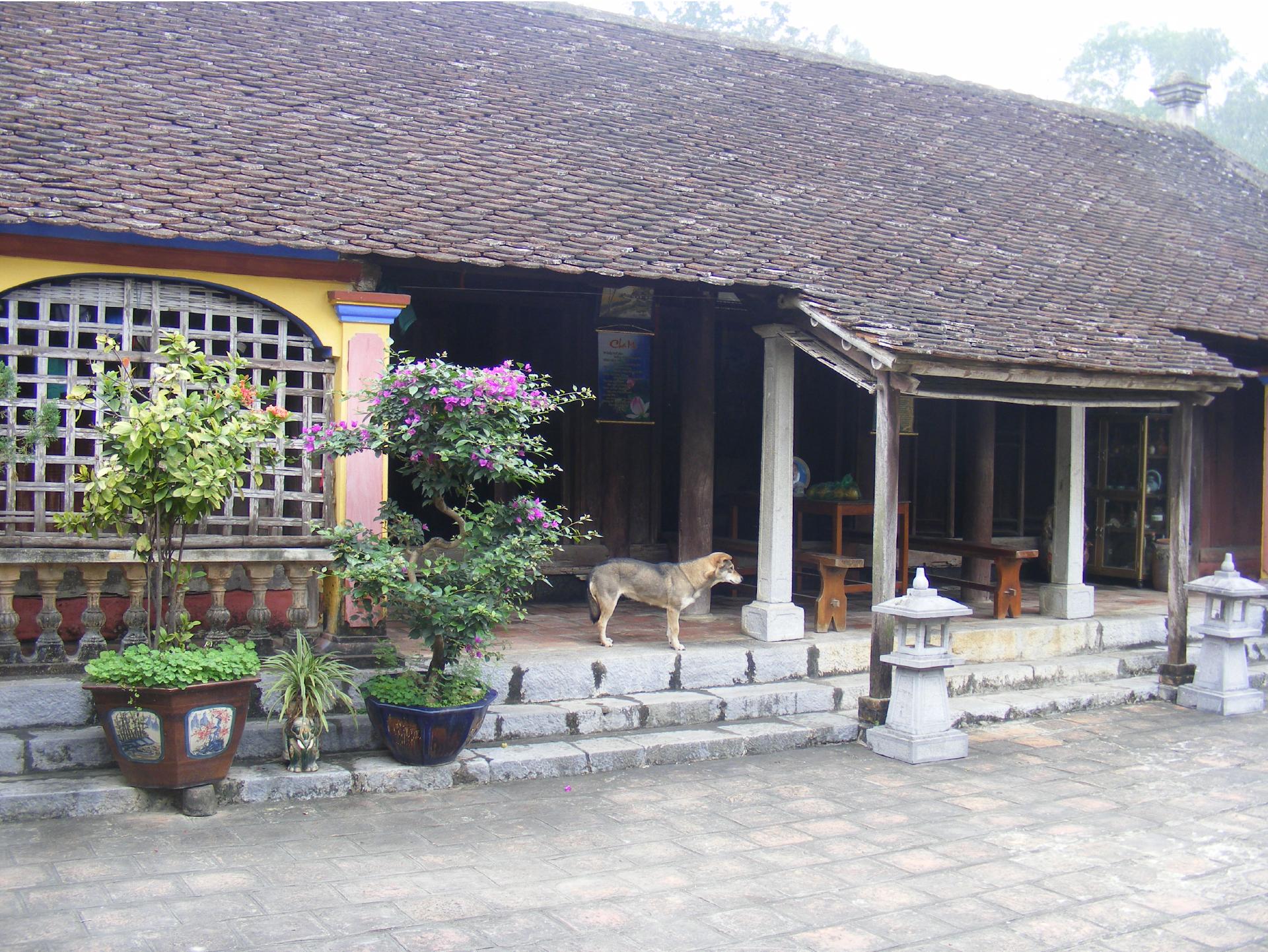 Nét độc đáo làng cổ Đông Sơn ảnh 19