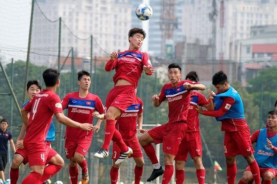 VFF phản bác thông tin về HLV Park Hang-seo trên báo Hàn Quốc ảnh 1