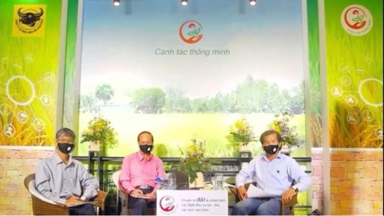 TS. Hồ Văn Chiến (bên trái), GS.TS Nguyễn Bảo Vệ (giữa), ThS. Phan Văn Tâm (bên phải) tư vấn trực tuyến kỳ 1 ngày 25/5/2021 về việc chuẩn bị đất và chăm bón cây lúa đầu vụ Hè Thu. Ảnh: PHAN NAM