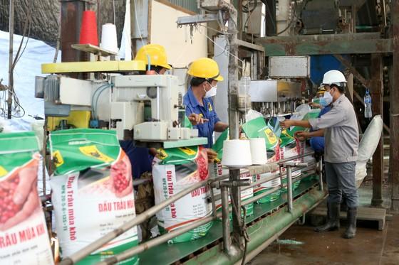 Ông Ngô Văn Đông (Tổng Giám đốc Công ty Cổ phần Phân bón Bình Điền): Quan trọng nhất là giúp bà con nông dân yên tâm sản xuất ảnh 3