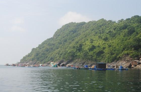 Cà Mau: Đề nghị công nhận thị trấn Sông Đốc là thị trấn đảo ảnh 1