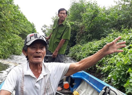 """Cần sớm giải quyết dứt điểm """"điểm nóng"""" đất rừng U Minh Hạ ảnh 1"""