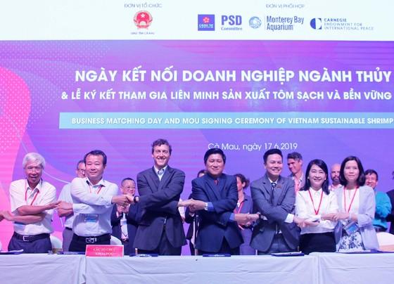 Các 'ông lớn' ngành tôm tham gia liên minh sản xuất tôm sạch và bền vững Việt Nam ảnh 1