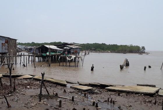 Cấp bách đầu tư các công trình phòng chống sạt lở bờ biển ở Cà Mau ảnh 2