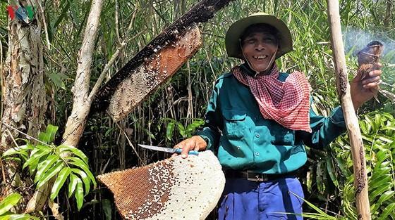 Gác kèo ong và muối ba khía được công nhận Di sản văn hóa phi vật thể cấp quốc gia ảnh 1