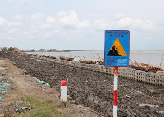 Cà Mau: Nhiều đoạn đê biển Tây bị sạt lở, có thể gây vỡ đê bất cứ lúc nào ảnh 1