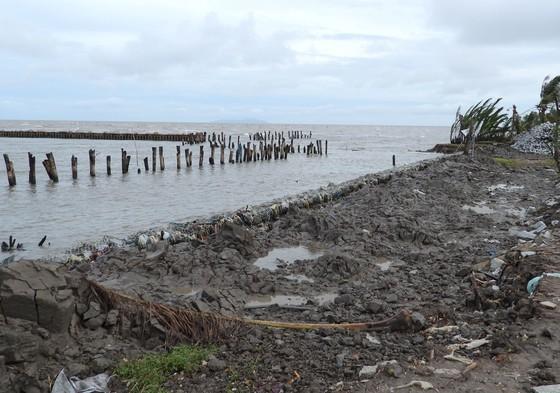 Cà Mau kiến nghị điều chỉnh một số nội dung kết luận Kiểm toán Nhà nước về dự án đê biển Tây ảnh 1