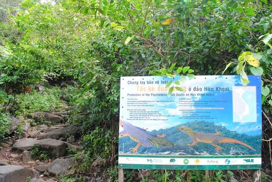 Cà Mau thành lập khu rừng bảo tồn cụm đảo Hòn Khoai - Hòn Chuối ảnh 1