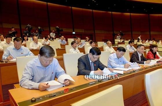 ĐBQH kỳ vọng lớn vào việc Tổng Bí thư giữ chức vụ Chủ tịch nước ảnh 3