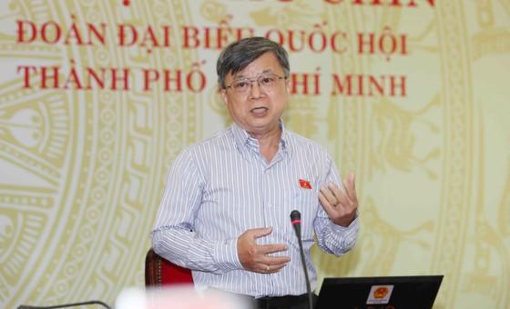ĐBQH đề xuất xây dựng Luật về an ninh kinh tế, bảo vệ người tốt ảnh 1