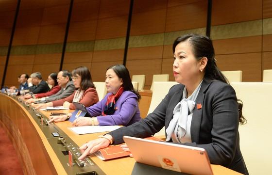 Quốc hội thông qua Luật Bảo vệ môi trường (sửa đổi) ảnh 2