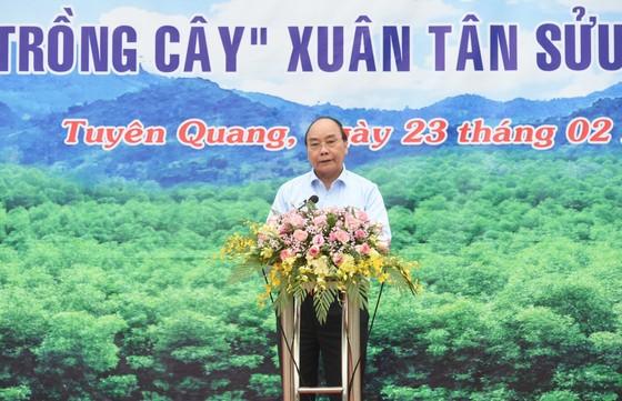 Thủ tướng kêu gọi trồng cây 'Vì một Việt Nam xanh' ảnh 1