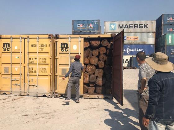 Phát hiện 50 container nghi gỗ giáng hương nhập lậu ảnh 1