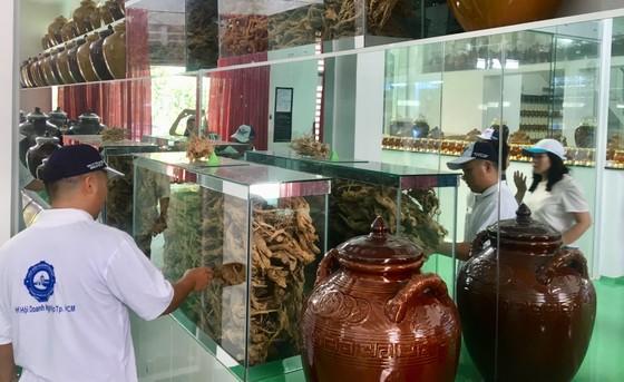 Khai thác, kết nối phát triển du lịch liên vùng TPHCM với các tỉnh Đông Nam bộ ảnh 2