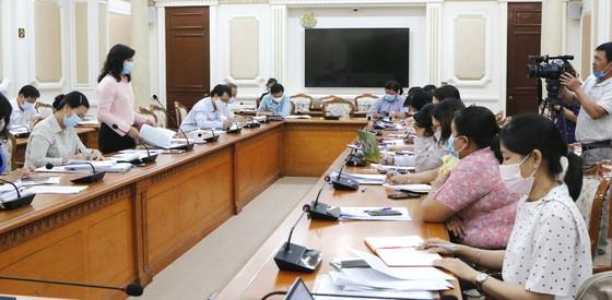 HĐND TPHCM bắt đầu đợt giám sát cải cách hành chính và thực hiện chính sách đặc thù ảnh 2