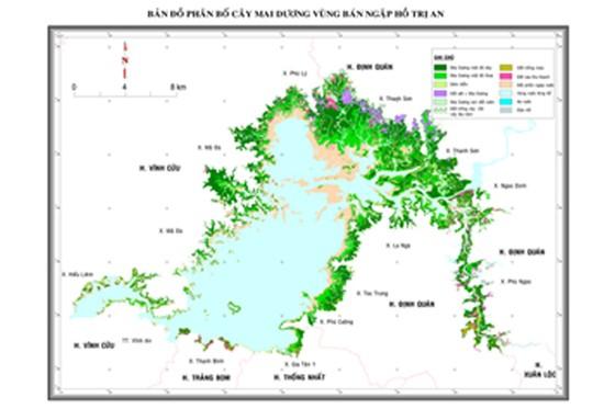 Gian nan xử lý 17.000 ha cây mai dương tại hồ Trị An ảnh 1
