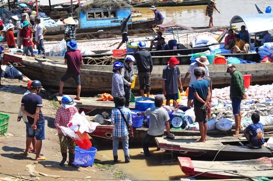 Đã có hơn 1.500 tấn cá bè trên sông La Ngà bị chết ảnh 6