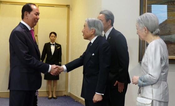 Nhà vua Nhật Bản và Hoàng hậu tham dự tiệc chiêu đãi của Việt Nam ảnh 1