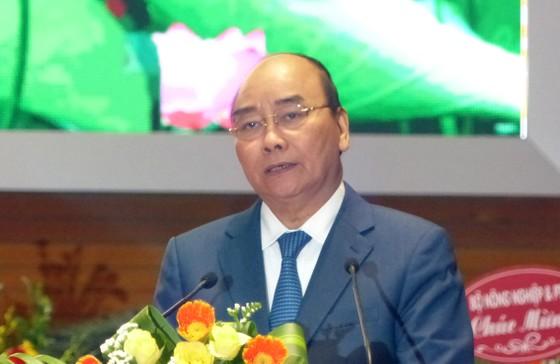 Hội Cựu chiến binh Việt Nam là chỗ dựa vững chắc của Đảng, Nhà nước và Nhân dân ảnh 2