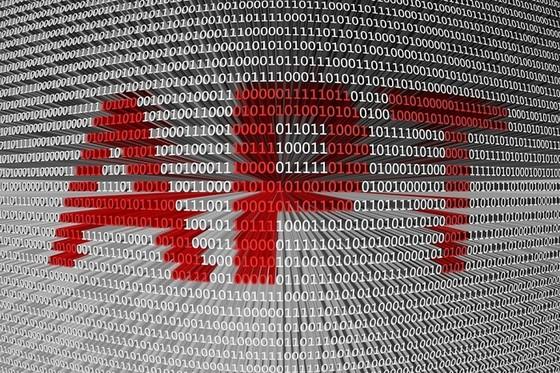 Thiệt hại do virus máy tính ở Việt Nam vượt ngưỡng 20.000 tỷ đồng ảnh 3