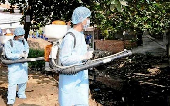 Xử phạt 98 trường hợp không hợp tác phòng, chống dịch sốt xuất huyết ảnh 1