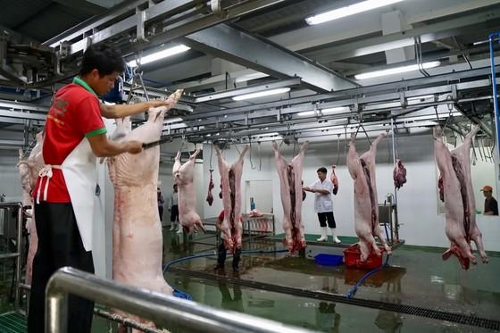 Kiểm soát chặt nguồn thịt heo vào TPHCM ảnh 2