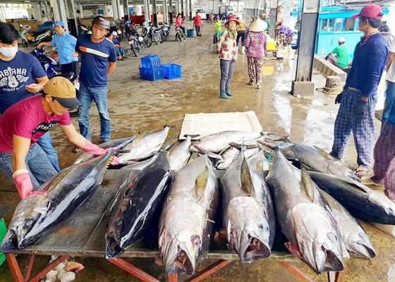 Xuất khẩu hải sản sang EU từ vị trí thứ 2 xuống thứ 5 do 'thẻ vàng' ảnh 1