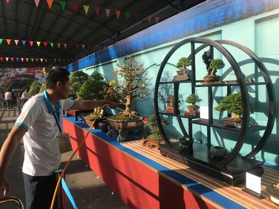 Khai mạc Lễ hội Bonsai – Suiseki Châu Á - Thái Bình Dương tại Khu du lịch Suối Tiên ảnh 2