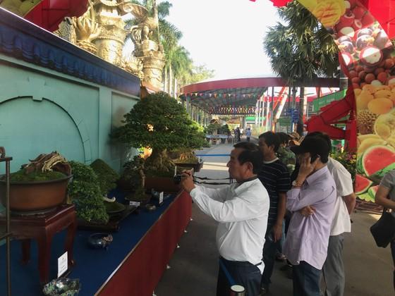 Khai mạc Lễ hội Bonsai – Suiseki Châu Á - Thái Bình Dương tại Khu du lịch Suối Tiên ảnh 1