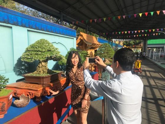 Khai mạc Lễ hội Bonsai – Suiseki Châu Á - Thái Bình Dương tại Khu du lịch Suối Tiên ảnh 3