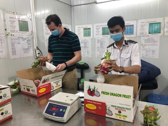 Trái cây tươi Việt Nam chuẩn bị tiếp tục xuất khẩu sang Hoa Kỳ ảnh 3
