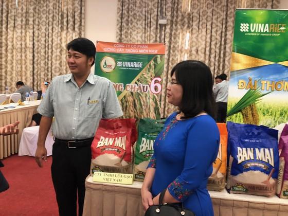 Xuất khẩu gạo vào EU chỉ bằng 1/6 so với Thái Lan ảnh 1
