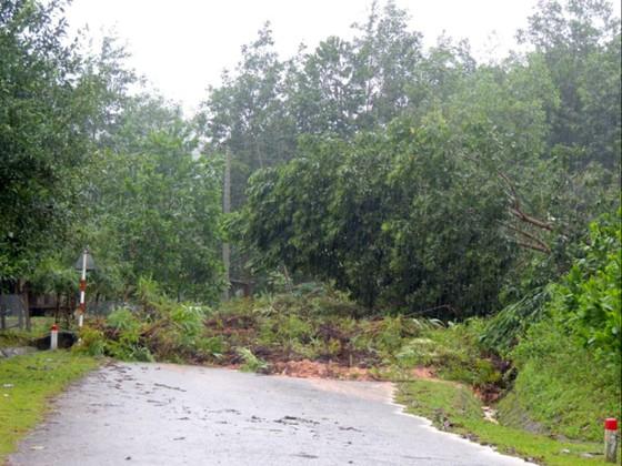 Hơn 60 trường bị ngập lụt, Quảng Ngãi cho học sinh nghỉ học trong ngày 6-11 ảnh 2