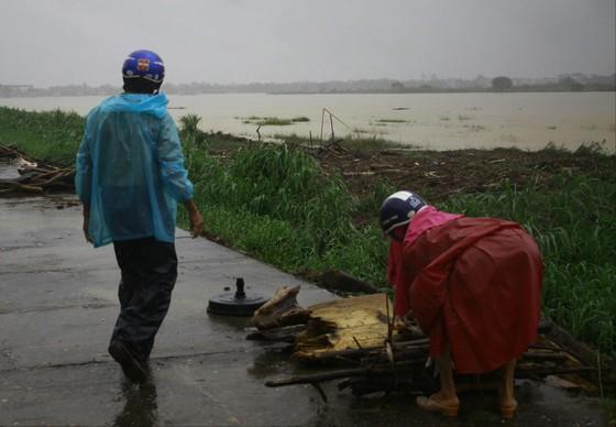 Người dân Quảng Ngãi liều mình vớt củi giữa dòng nước lũ ảnh 4