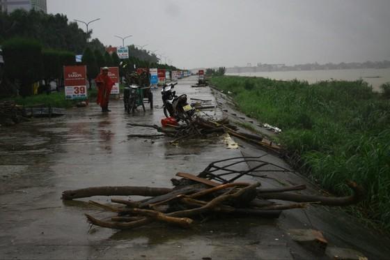 Người dân Quảng Ngãi liều mình vớt củi giữa dòng nước lũ ảnh 6