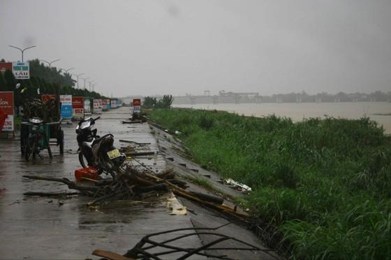 Người dân Quảng Ngãi liều mình vớt củi giữa dòng nước lũ ảnh 5