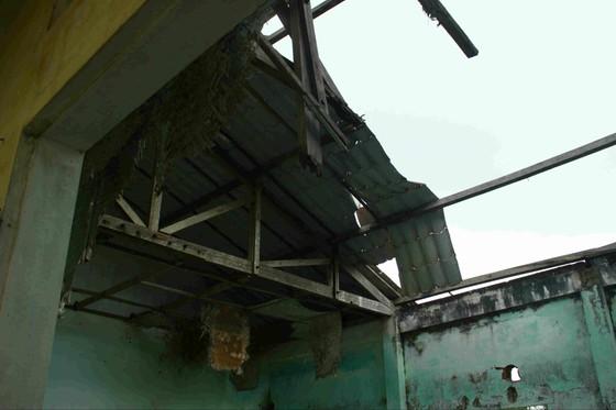 Quảng Ngãi: Khu tái định cư 11 tỷ đồng bỏ hoang 20 năm ảnh 3
