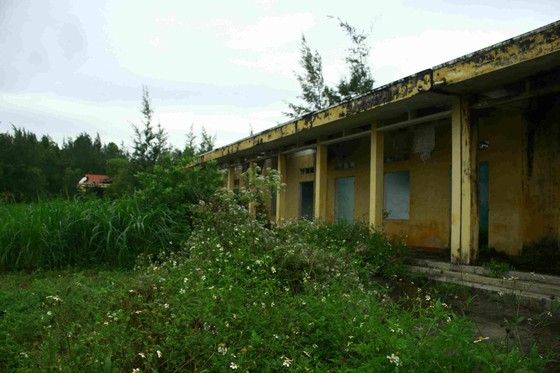 Quảng Ngãi: Khu tái định cư 11 tỷ đồng bỏ hoang 20 năm ảnh 5
