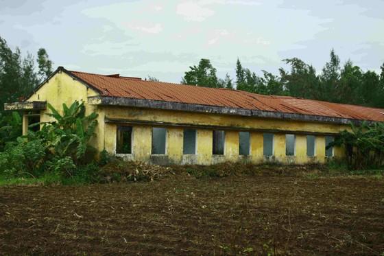 Quảng Ngãi: Khu tái định cư 11 tỷ đồng bỏ hoang 20 năm ảnh 2