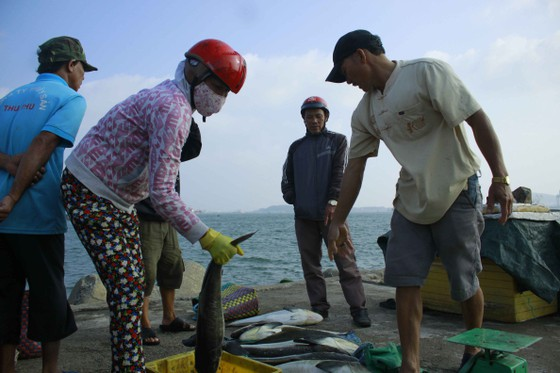Cá 1 triệu đồng một con, người nuôi lãi lớn ảnh 5