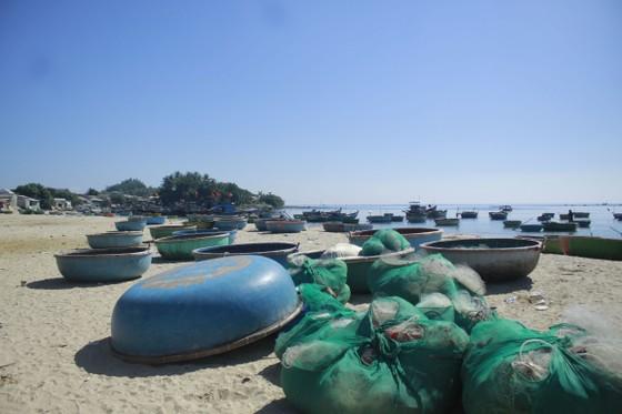 Mùng 1, hái lộc đầu năm với ngư dân Quảng Ngãi ảnh 7
