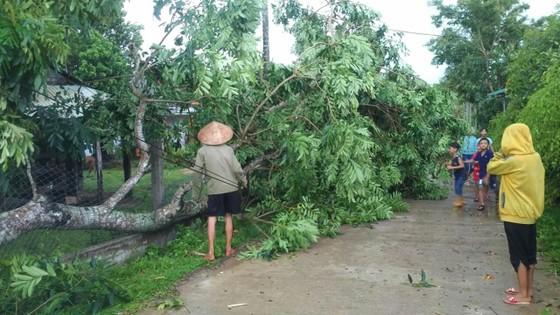 Lốc xoáy cuốn đổ sập hàng chục ngôi nhà ở Quảng Ngãi ảnh 4