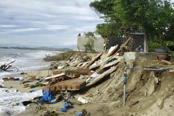 Quảng Ngãi kiến nghị hỗ trợ 222 tỷ đồng thực hiện 3 dự án khẩn cấp sạt lở ảnh 1
