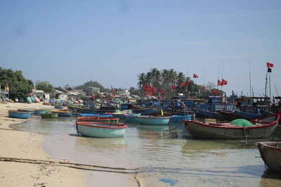 Quảng Ngãi: 23 tàu cá không được đăng kiểm, ngư dân cần hỗ trợ ảnh 1