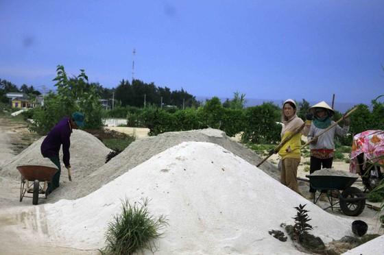 Quảng Ngãi: Nhiều ý kiến xử lý đất thải từ hoạt động sản xuất nông nghiệp đảo Lý Sơn ảnh 2