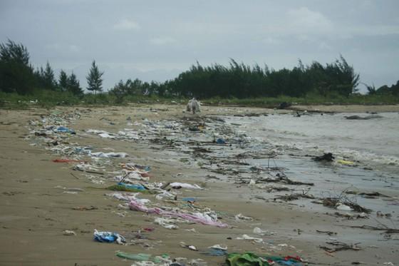 Củi, rác thải phủ khắp hạ lưu sông Trà Bồng sau bão số 5 ảnh 2