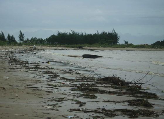 Củi, rác thải phủ khắp hạ lưu sông Trà Bồng sau bão số 5 ảnh 1