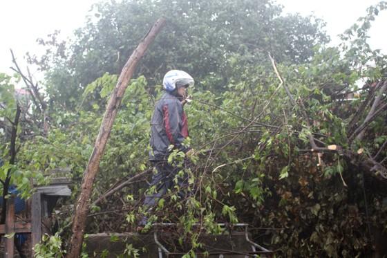 Quảng Ngãi: Đảm bảo an toàn cho người dân trước cơn bão số 6 ảnh 5