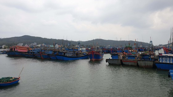 Đã liên lạc được tất cả tàu Quảng Ngãi ở Trường Sa, các tàu vùng biển Philippines ảnh 1
