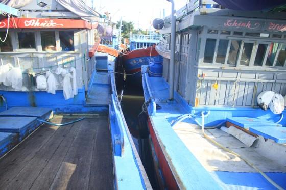 Tàu cá bị mắc kẹt giữa âu thuyền ở Quảng Ngãi ảnh 2